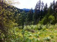 Sauer Mountain