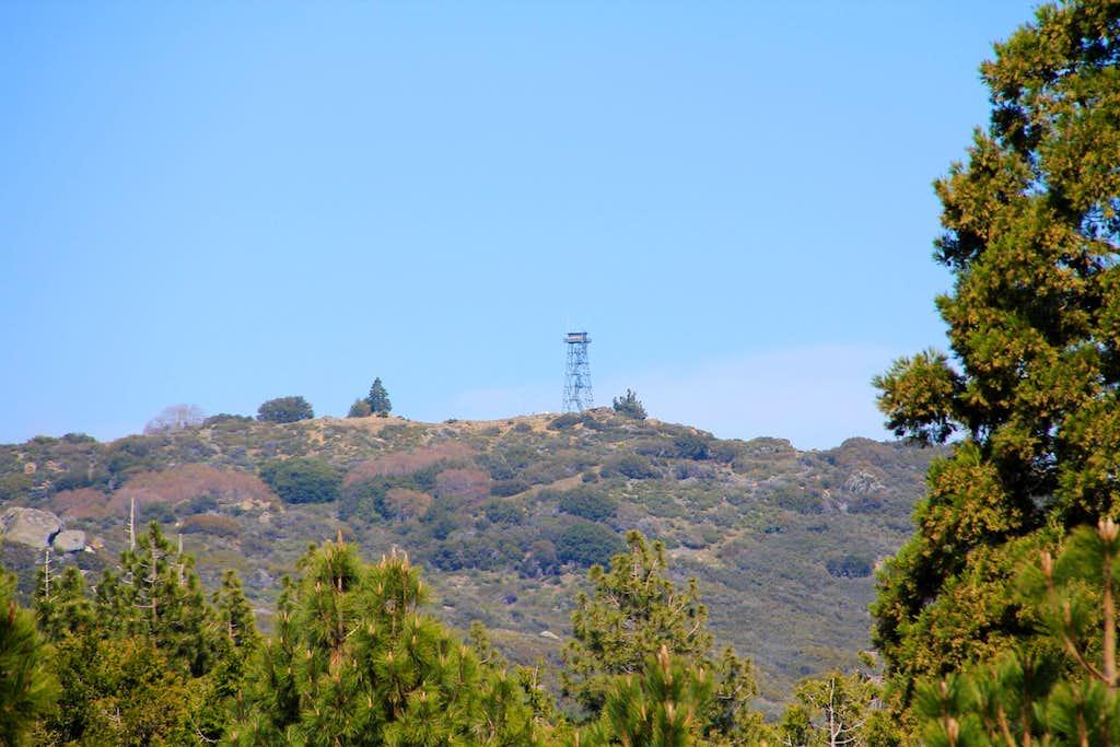Palomar Mountain highpoinit.