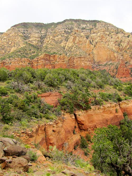 Mormon Canyon/Wilson Mountain