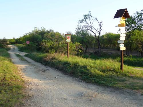 Trail sign in Havranice Heath