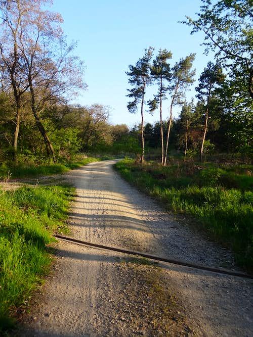 Landscape in Havranice Heath