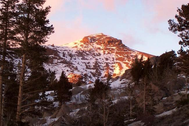 Red Lake Peak in the evening...