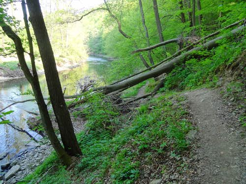 The Thaya hiking trail, in the bottom of the valley along the water
