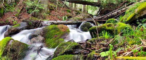 Twin Creek