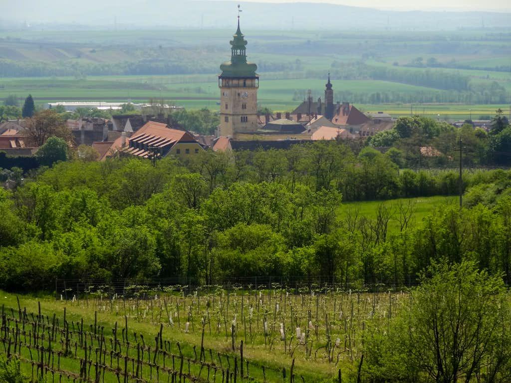 Retz behind the wineyards