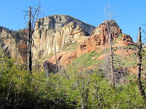 Lost Wilson Mountain