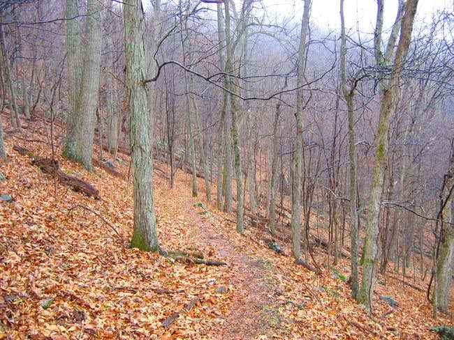 The trail leading down toward...