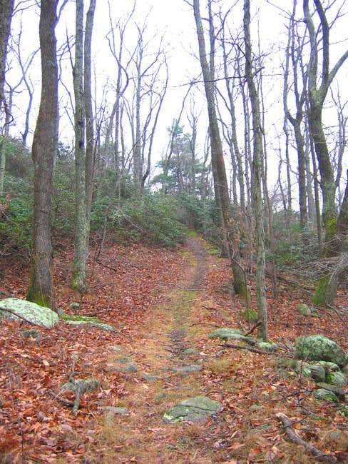The Flat Top Trail, leading...