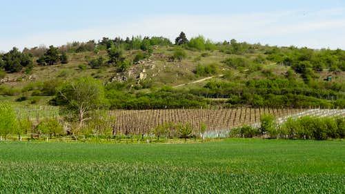 Rocky hill in the Podyji national park