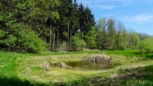 Small lake in the Podyji national park