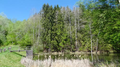 Lake of Žlebský potok in the Podyji national park