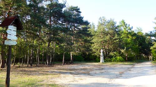 Trail though the Havranice Heath