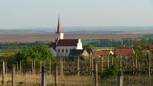Popice church and wineyards