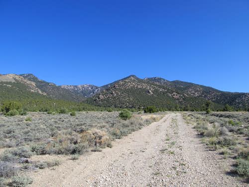 Road into Exchequer Canyon