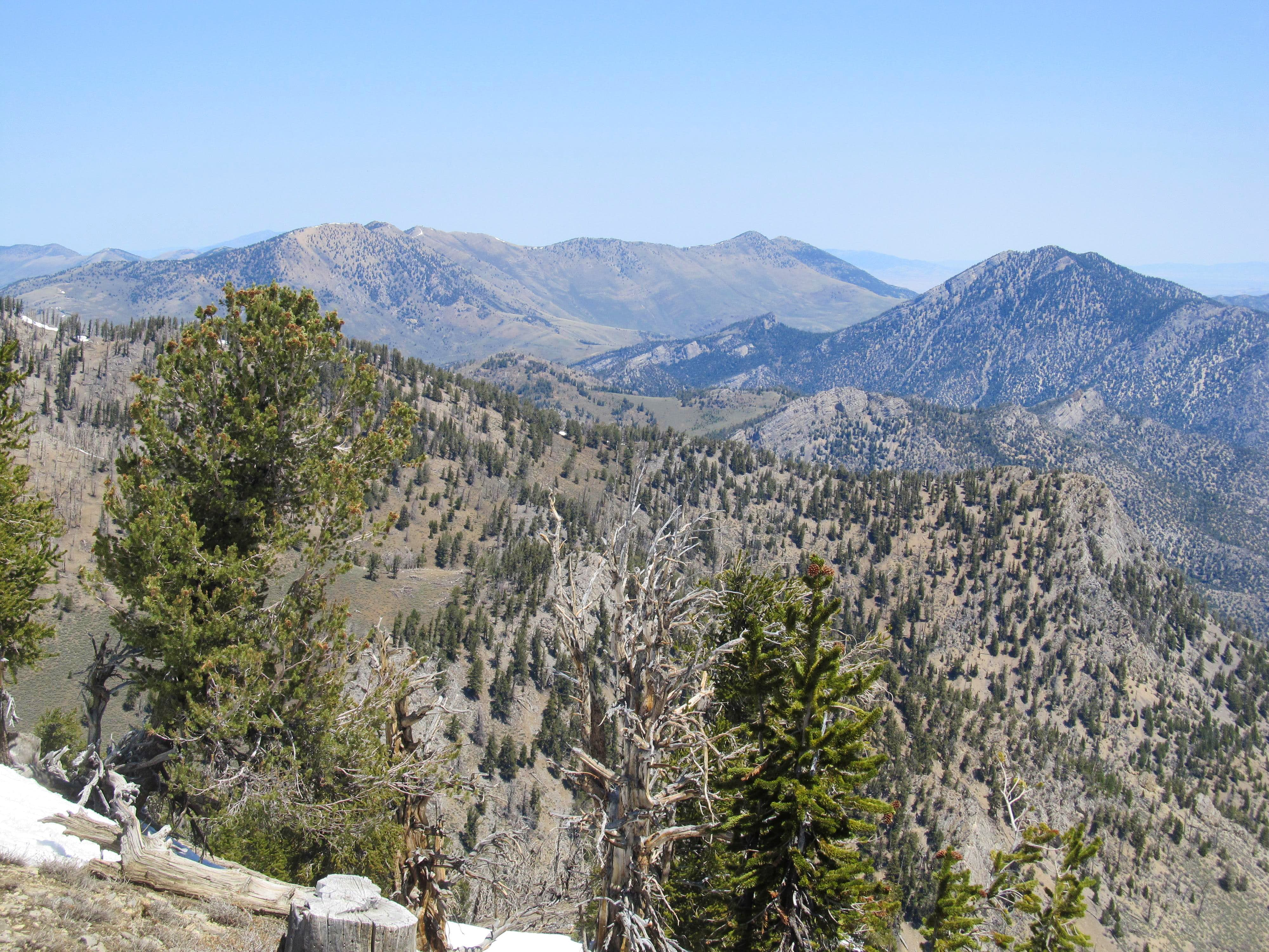 Snow Creek Peak