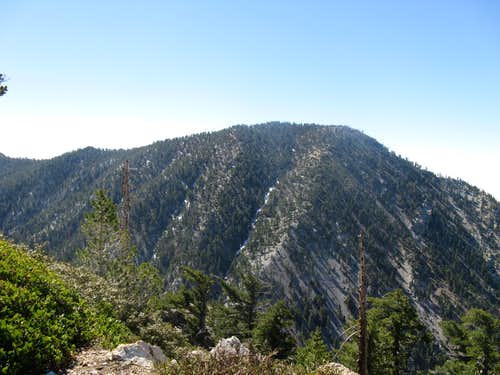 Cucamonga Peak from Bighorn