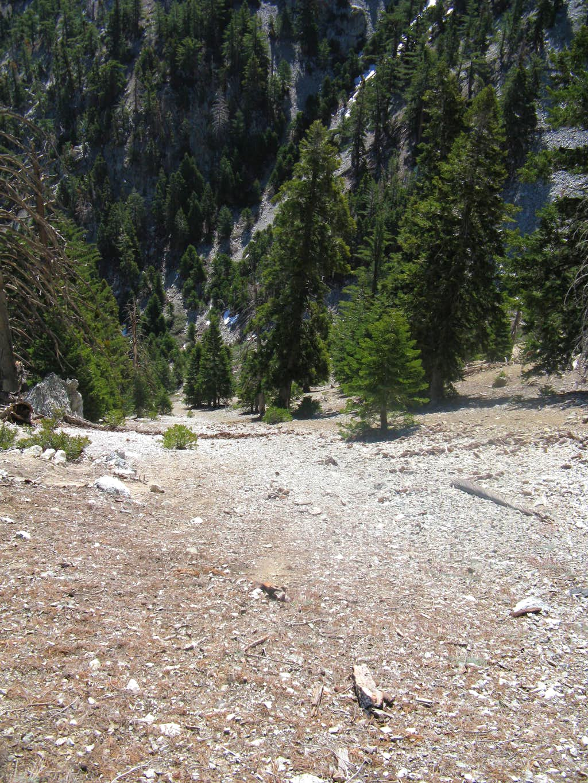 Bighorn Scree Glissade Slope