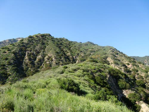 Brand Park Verdugo Mountains 13