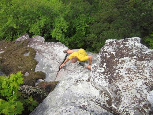 Scrambling on Hawksbill