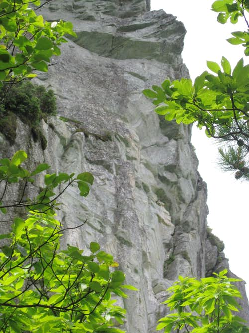 Cliffs of Hawksbill Mountain