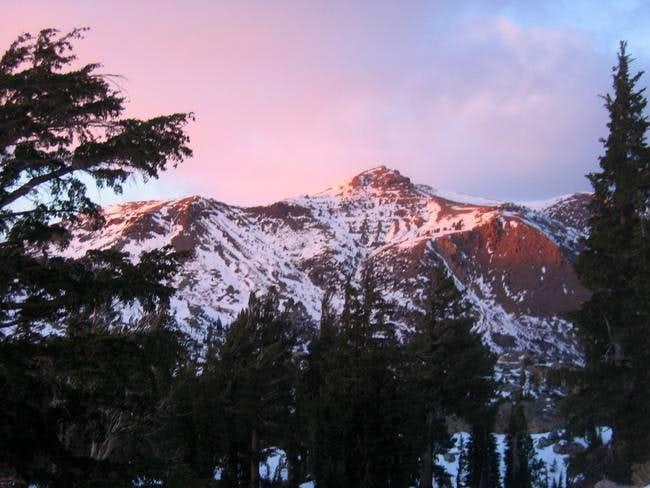 Red Lake Peak in evening...