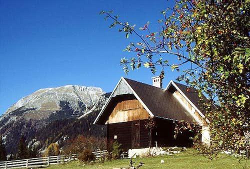 On Uskovnica alpine meadows....
