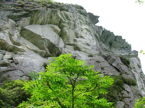 The Cliffs of Hawksbill Mountain