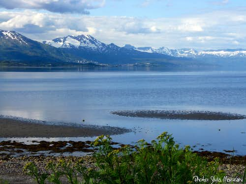 The Narvik bay, Nordland