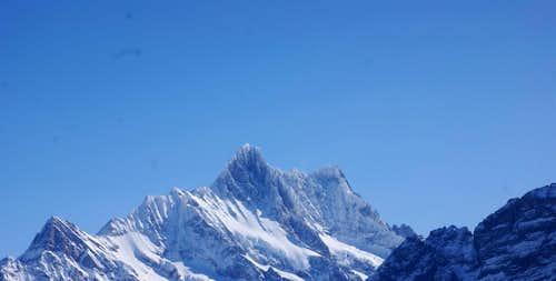 Icy conditions on Schreckhorn and Lauteraarhorn