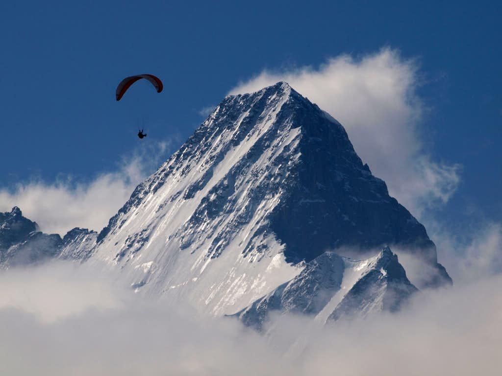 Paraglider in front of Schreckhorn ...