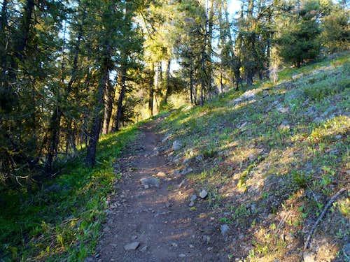 Lookout Mountain (near Twisp)