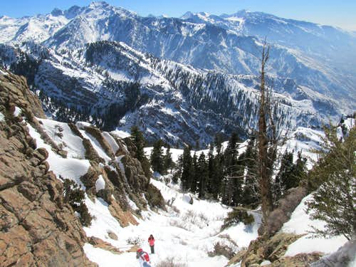 Mild Winter & Spring in the Wasatch