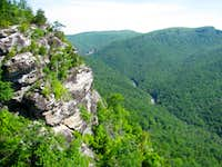 """This and That"" in Linville Gorge"