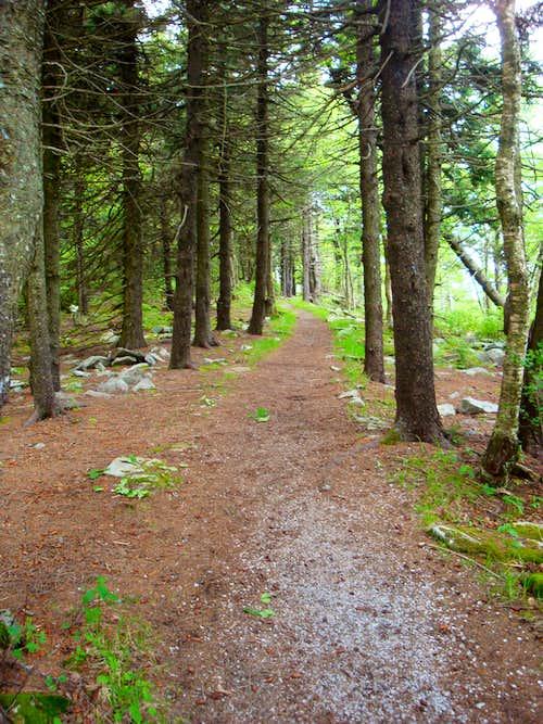 trail around the summit area