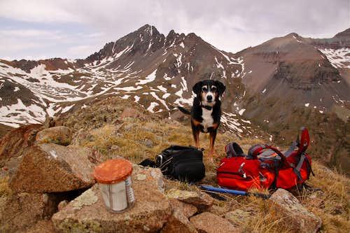 Duchess on summit