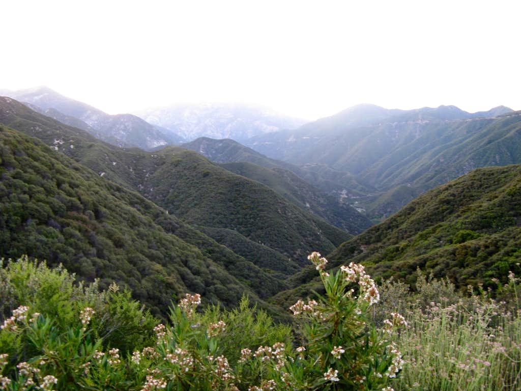 Iron Mt Baldy Traverse 2