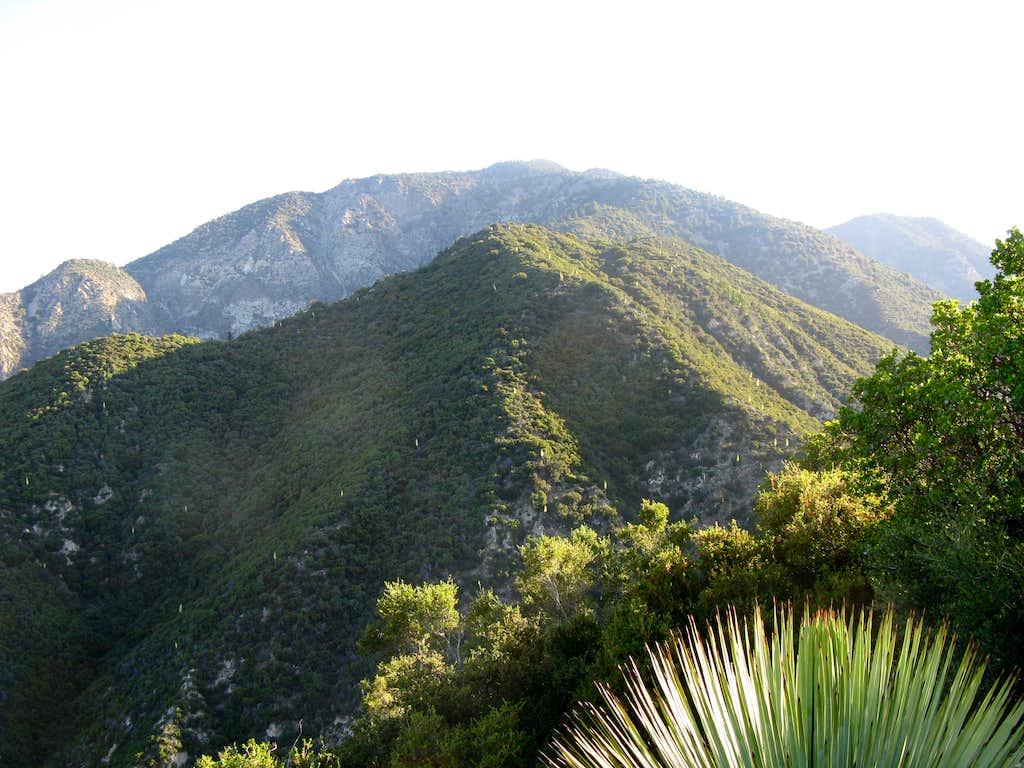 Iron Mt Baldy Traverse 7