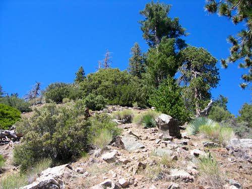 Iron Mt Baldy Traverse 12E