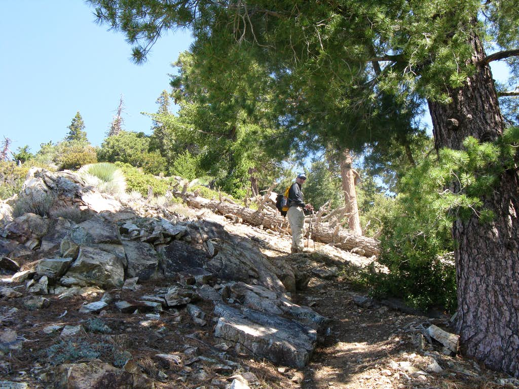 Iron Mt Baldy Traverse 13