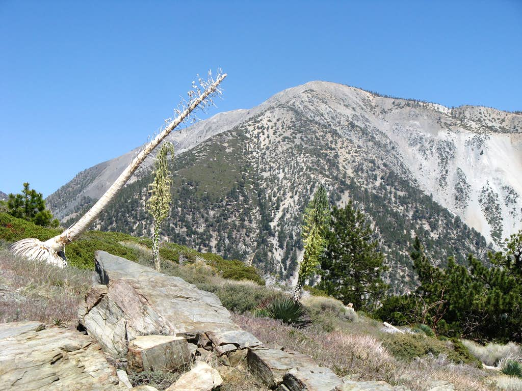 Iron Mt Baldy Traverse 48