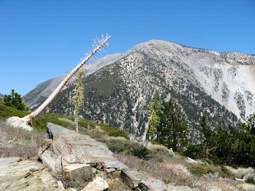 Iron Mt Baldy Traverse 48