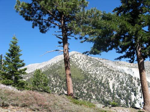 Iron Mt Baldy Traverse 52