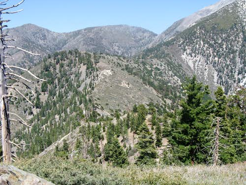 Iron Mt Baldy Traverse 50