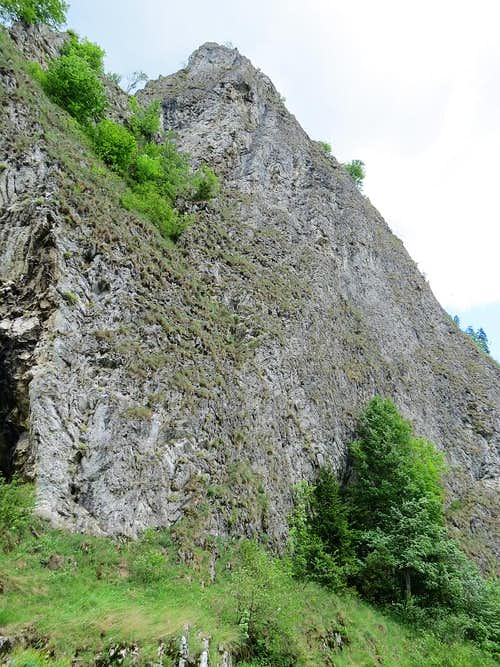 One of limestone rocks