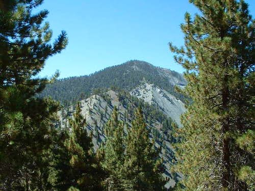 Pine Mtn. from Guffy campground