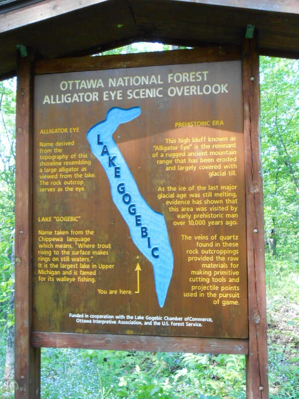 Overlook Sign - Alligator Eye