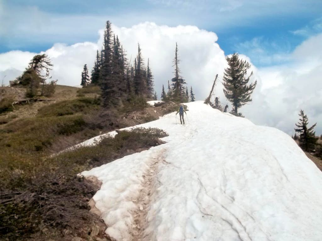 Zephyr crossing a snowfield while heading up