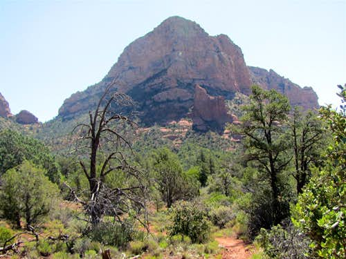 North end of Llama Trail