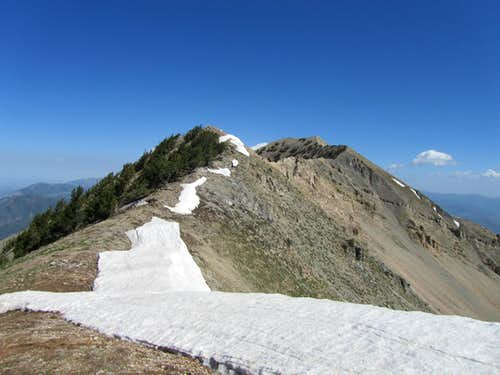 Cascade Mountain from the West face, Utah