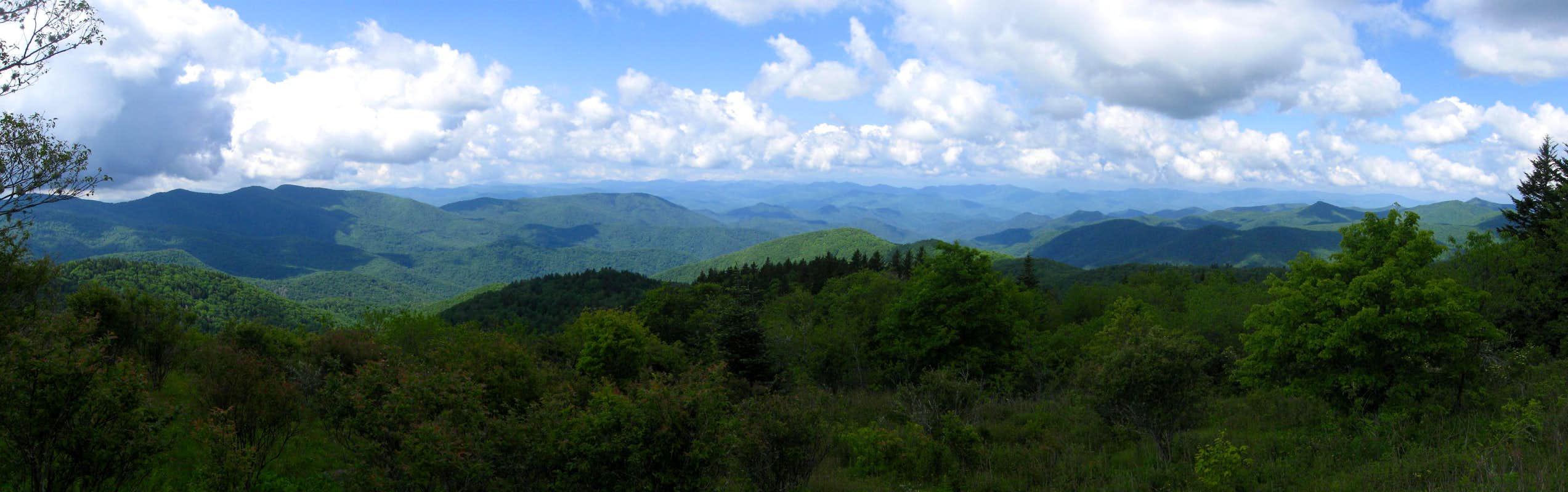 Reinhart knob richland balsam loop trip reports for Balsam mountain